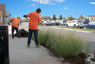 Maintenance Commercial Services landscaping services Denver Littleton Co